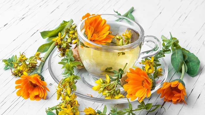 ceaiul-de-galbenele-proprietati
